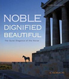 Noble Dignified Beautiful: The Quiet Elegance of the Horse