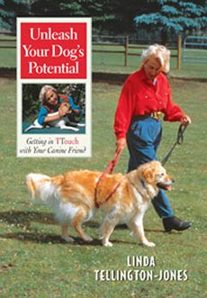 Unleash Your Dogs Potential: Getting in TTouch with Your Canine Friend (DVD)