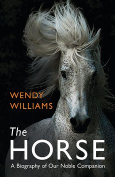 Horse: Biography of Our Noble Companion