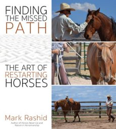 Finding the Missed Path (NOW IN STOCK)
