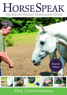 HorseSpeak: Equine-Human Translation Guide (DVD)