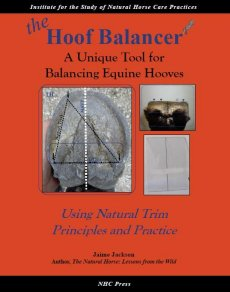 The Hoof Balancer: A Unique Tool for Balancing Equine Hooves
