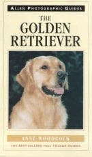 Golden Retriever: ADG 3
