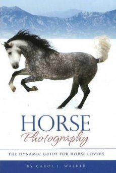 Horse Photography: The Dynamic Guide for Horse Lovers (2nd Edition)