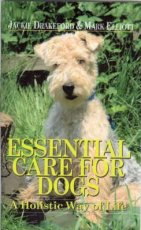 Essential Care for Dogs