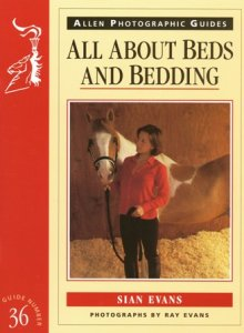 All About Beds & Bedding