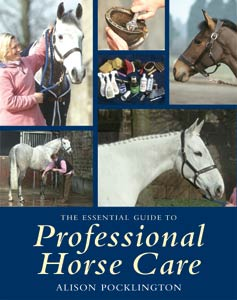 The Essential Guide to Professional Horse Care