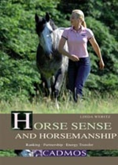 Horse Sense and Horsemanship: Rankings, Partnership, Energy Transfer