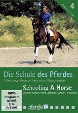 SCHOOLING A HORSE PART 4 (DVD): CANTER WORK