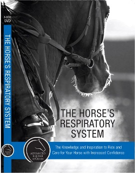 HORSES RESPIRATORY SYSTEM: ADVANCED EQUINE STUDIES