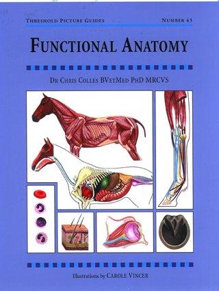Functional Anatomy: TPG 43