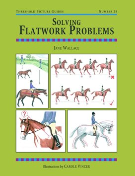 Solving Flatwork Problems: TPG 25