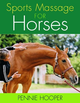 Sports Massage For Horses