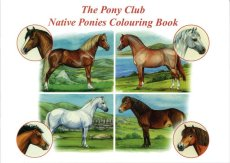 Native Ponies Colouring Book