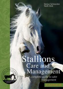 Stallions Care and Management: A Complete Guide to Safer Management
