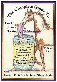 COMP GUIDE TO TRICK HORSE TRAINING 2 DVD